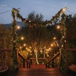 Small white lights that line path to wedding reception